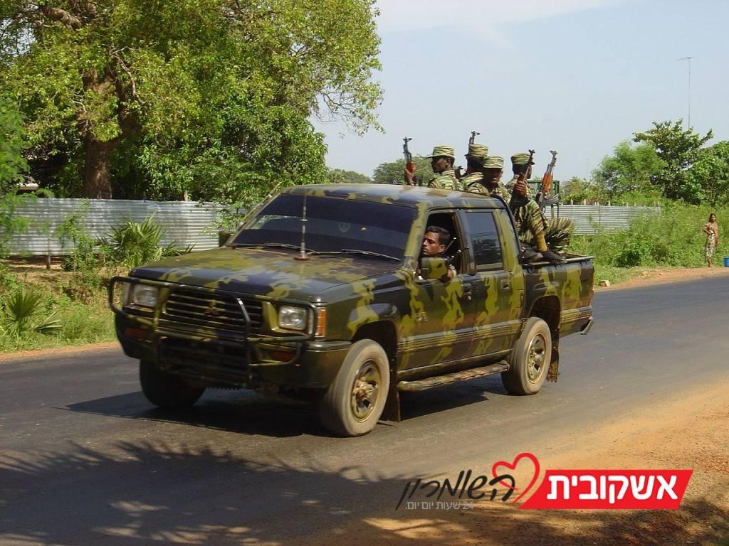 נמרים מנייר: טרור מנצחים עם כח